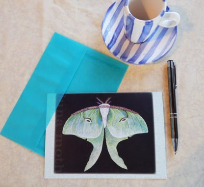 Danasimson.com Gift card Luna Moth with vellum envelope