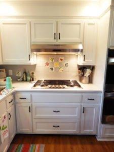kitchen garden custom tiles behind the stove.